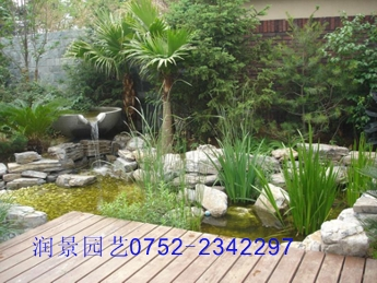 洋房庭院,空中花园等景观设计,水景制作,施工和后续养护服务.图片